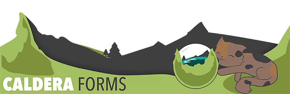 6+1 legjobb wordpress kapcsolati urlap bovitmeny caldera forms